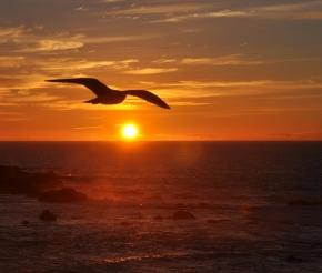 Атлантика. Фото: наш турист Наталья Царева