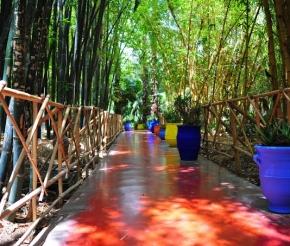 Сад Мажорель, созданный Ив Сен Лораном