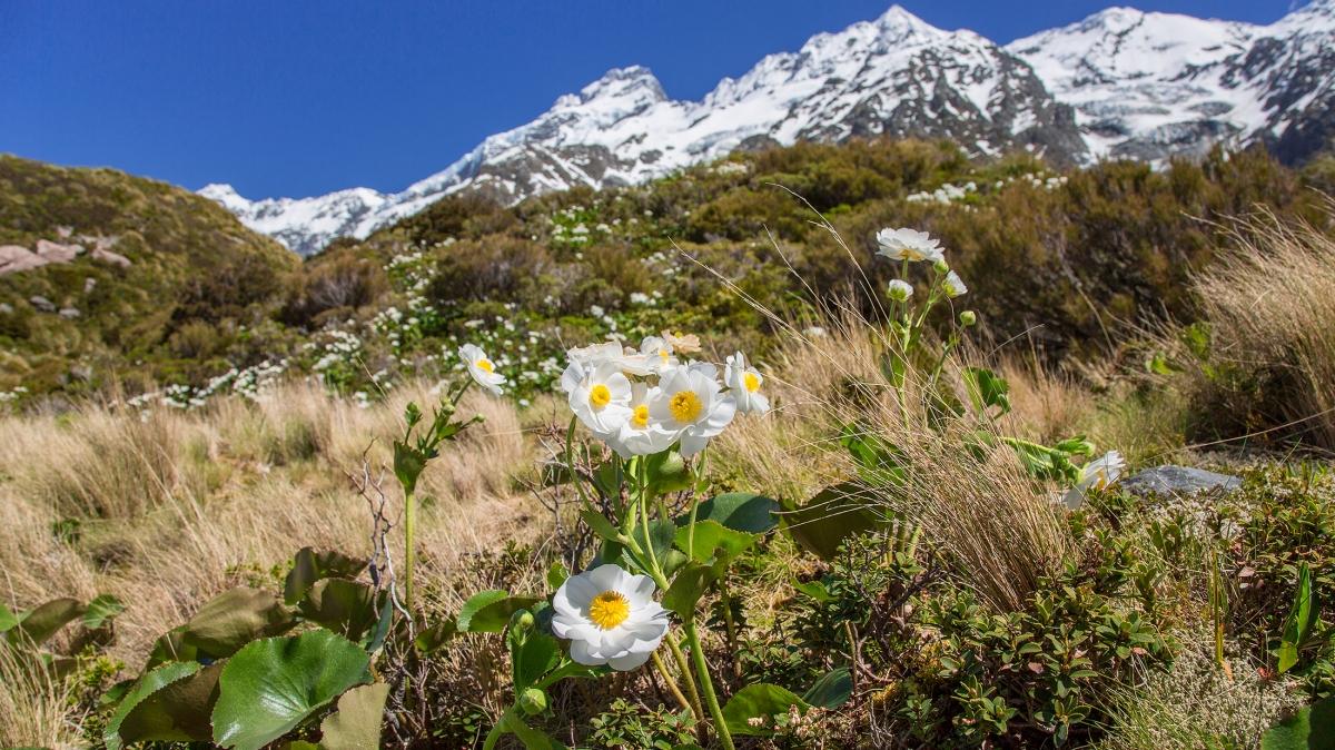 Гора Кука, фото нашей странницы Татьяны Руновой