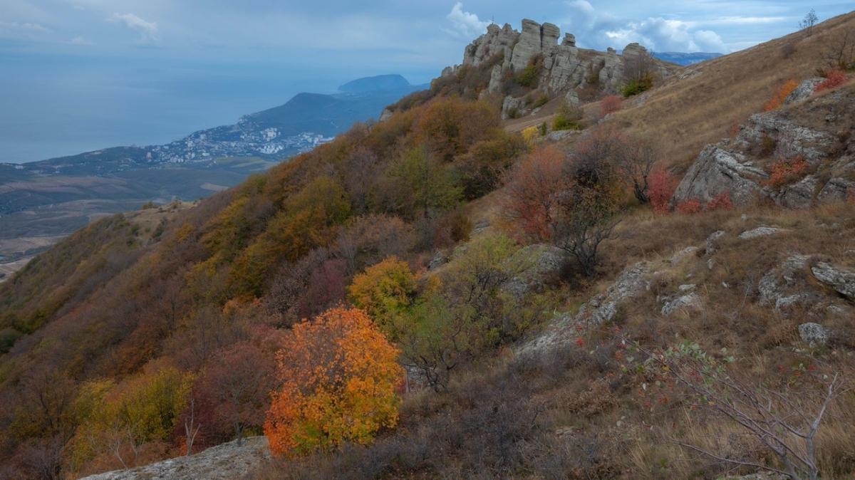 Фото Михаила Верёвченко
