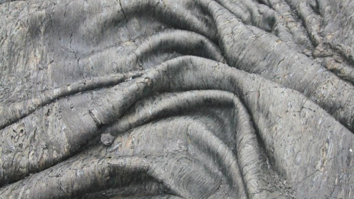 Свежая лава! Такой мы ее увидели в 2013 году, она застывала складками, словно ткань