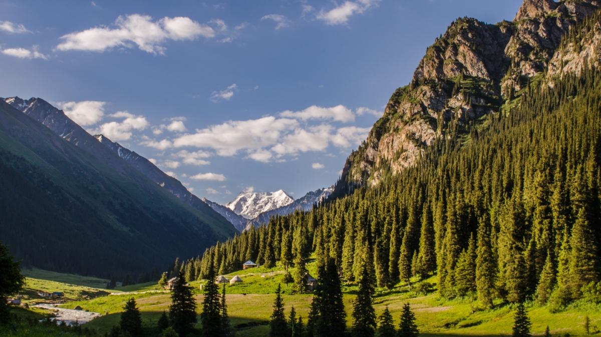 Долина Арашан. Фото: Жидков Анатолий