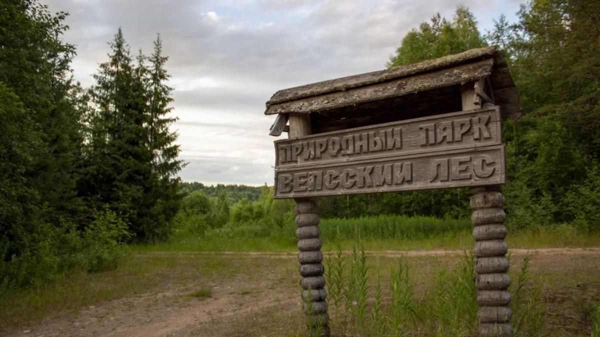 Фото Константин Горячев