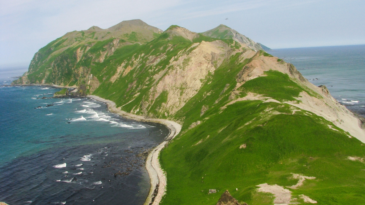 фото: SuricataJ, wikimedia