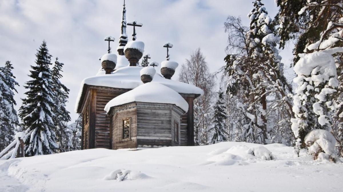 Фото К.Кокошкина