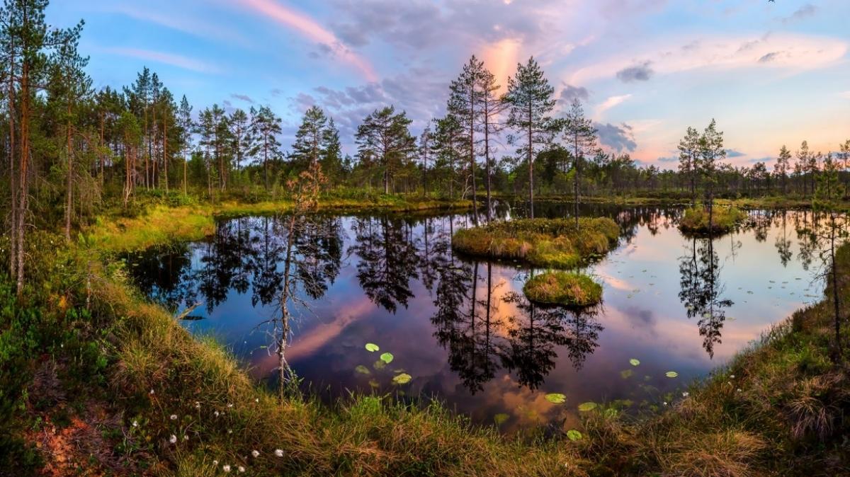 Фото Фёдор Лашков