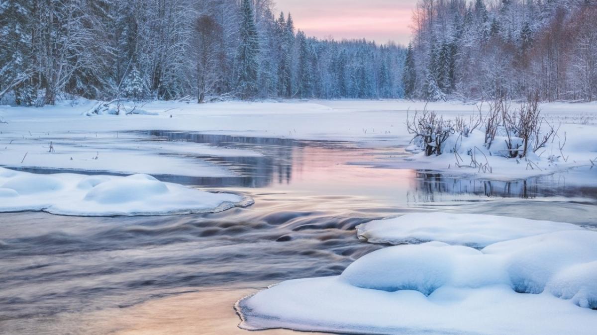 Фото Антона Агаркова