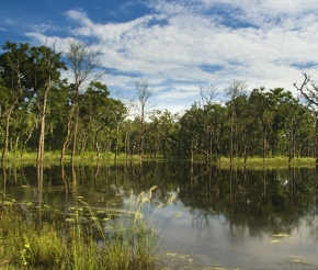 Читван, источник: http://travelermap.ru