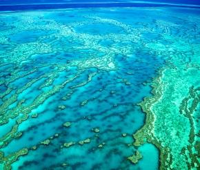 Полёт над Большим Барьерным Рифом. Источник: depositphotos.com