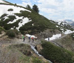 Июнь - в горах ранняя весна
