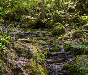 Ущелье Руфабго,  фото нашего Странника: Дмитрия Кочерыгина