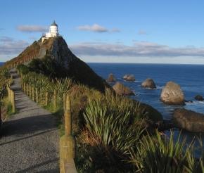 фото: Seabird NZ