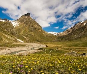 Зелёные поляны Прильбрусья, фото Дениса Агапова