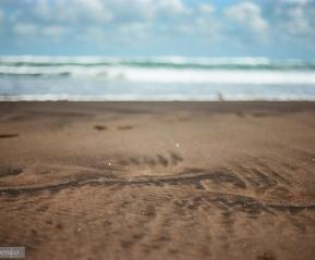 Вулканический песок.