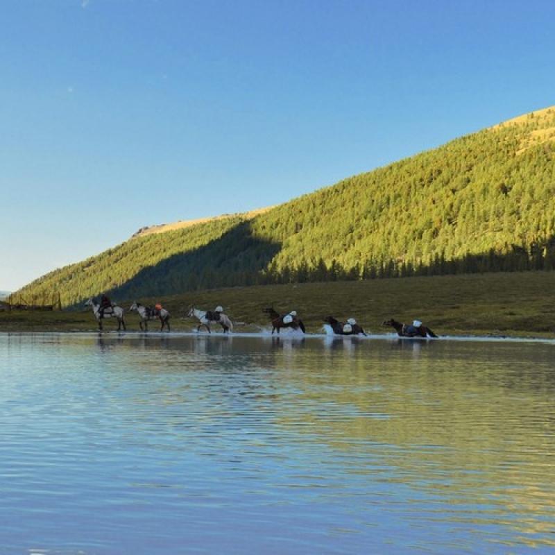 Лошади переходят Ак-Кемское озеро