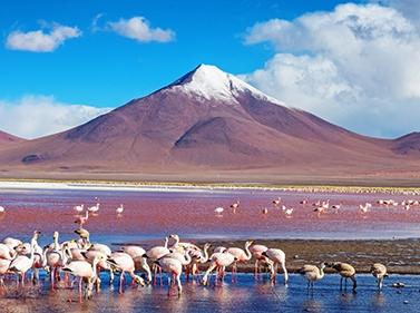Чили и Боливия: всё самое интересное за 12 дней