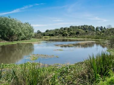 Прогулка к Бельскому болоту