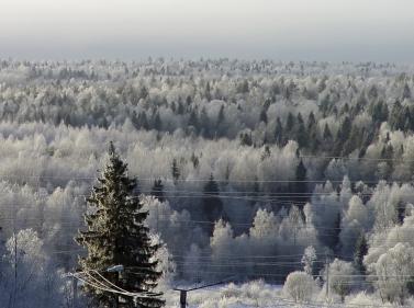 Зимние приключения в Карелии