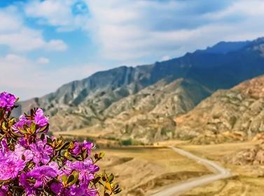 Майские праздники на Алтае