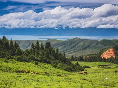 Большое путешествие по Киргизии