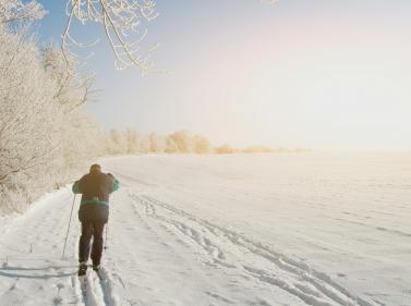 На лыжах в усадьбу Середниково и киногород