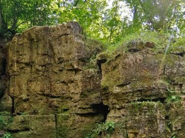 Прогулка к Васильевским каменоломням