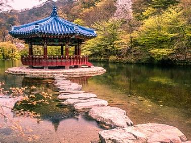 Вся Южная Корея за 11 дней